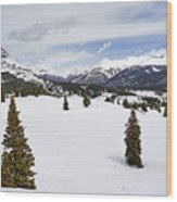 Colorado Snow Scene Wood Print