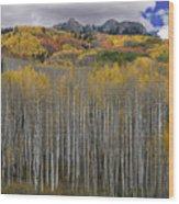 Colorado Splendor Wood Print