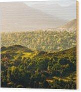Colorado Springs Wood Print
