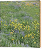 Colorado Summer Color Wood Print