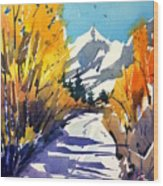 Colorado Winter 1 Wood Print
