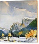 Colorado Winter 5 Wood Print