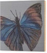 Colored Butterfly Wood Print