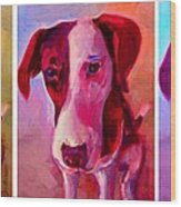 Colored Dog Strip Wood Print