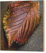 Colorfall Wood Print