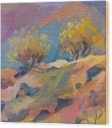 Colorful Armenia Wood Print