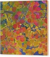 Colorful Aspen Wood Print