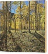 Colorful Aspens Wood Print