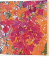 Colorful Autumn Leaves Wood Print