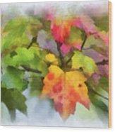 Colorful Autumn Leaves - Digital Watercolor Wood Print