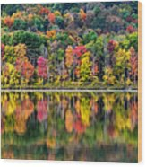 Colorful Autumn Reflections Wood Print