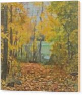 Colorful Autumn Trail Wood Print
