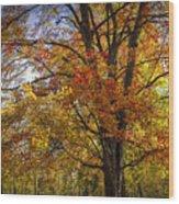 Colorful Autumn Tree In Southwest Michigan By Gun Lake Wood Print