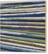 Colorful Bamboo Wood Print by Wim Lanclus