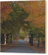 Colorful Byway Wood Print