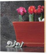 Colorful Cactus In Terracotta Pot Wood Print