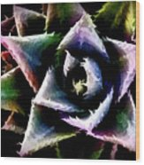 Colorful Cactus Wood Print