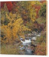 Colorful Canyon Wood Print