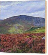 Colorful Carpet Of Wicklow Hills Wood Print