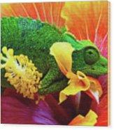 Colorful Chameleon Wood Print