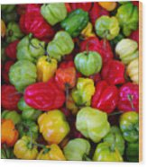 Colorful Chili Pepper Wood Print