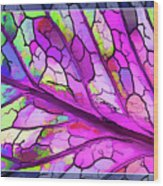 Colorful Coleus Abstract 3 Wood Print