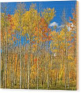 Colorful Colorado Autumn Landscape Wood Print