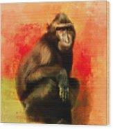 Colorful Expressions Black Monkey Wood Print