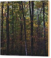 Colorful Fall Season Wood Print