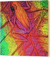 Colorful Frog On Leaf Wood Print