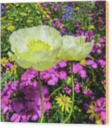 Colorful Garden II Wood Print
