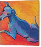 Colorful Greyhound Whippet Dog Painting Wood Print by Svetlana Novikova