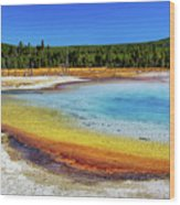 Colorful Hot Spring In Yellowstone Wood Print