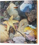 Colorful Leaves And Rocks In Creek Wood Print
