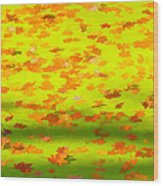 Colorful Leaves On Canal Wood Print
