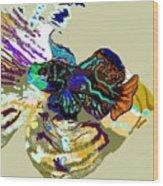 Colorful Manderin Fish Wood Print