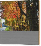 Colorful Maples Wood Print
