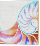 Colorful Nautilus Wood Print