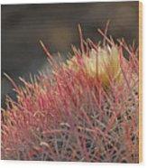 Colorful Needles Wood Print