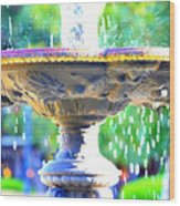Colorful New Orleans Fountain Wood Print
