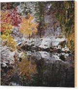 Colorful Pond Wood Print