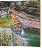 Colorful Pool In The Gorge Of Watkins Glen Wood Print