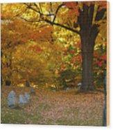 Colorful Rest Wood Print