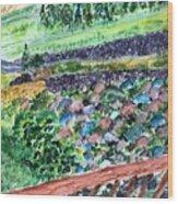Colorful Rock Garden Wood Print