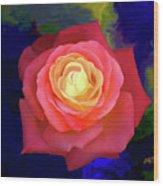 Colorful Rose 2 Wood Print