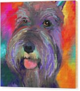 Colorful Schnauzer Dog Portrait Print Wood Print