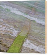 Colorful Seawall Wood Print