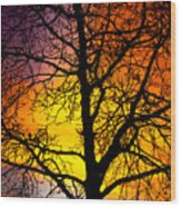 Colorful Silhouette Wood Print