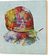 Colorful Snail Art  Wood Print