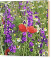 Colorful Spring Wild Flowers Wood Print